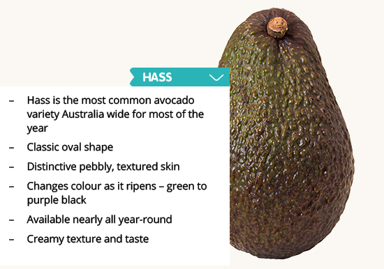 Select & prepare - Australian Avocados